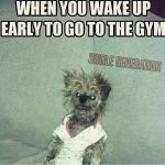 Waking Up Early To Go To The Gym