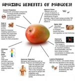 Why Are Mangoes Good For You?