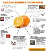 Why Are Oranges Healthy?