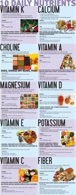 The 10 Crucial Daily Nutrients!