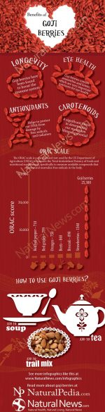 Goji Berries Stack Up Against Other Superfoods!