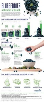 Blueberries ~ Health Benefits